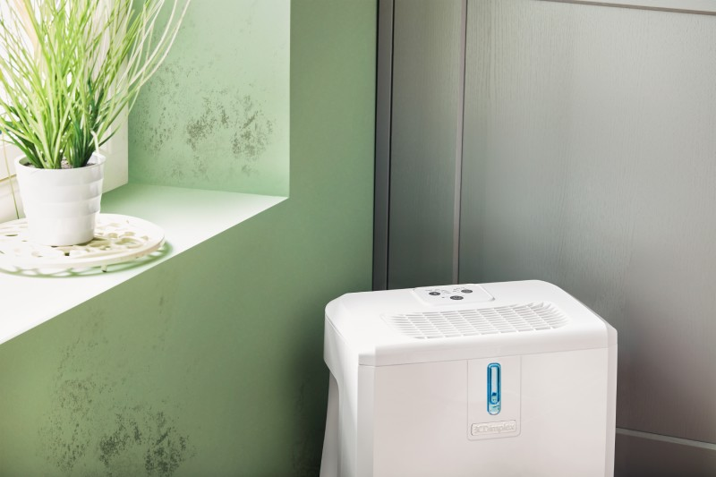 A Dimplex EverDri 14 litre dehumidifier near a window with mould on the wall