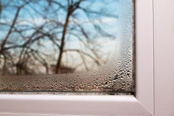 damp and condensation