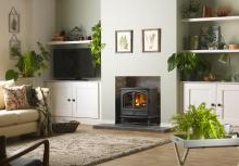Dimplex Fortrose Optimyst electric stove